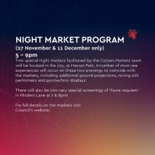 Northern Lights Trail Night Market Program